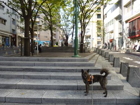 2012-1021azabu1.jpg