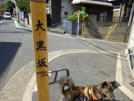 2012-1021saka.jpg