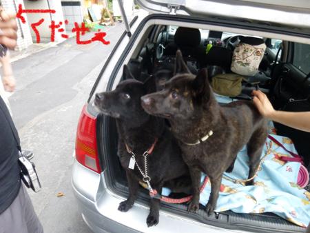 2012-0712uchiwa4.jpg
